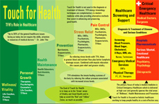Touch for Health Wellness Chart